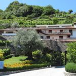 Winery Sorsasso on Lake Como