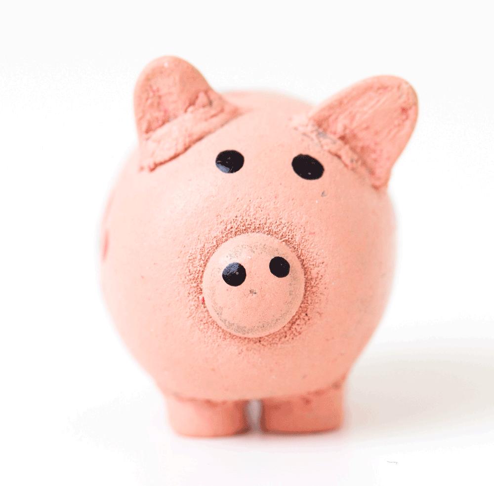 Glücksschwein Comer See 2019