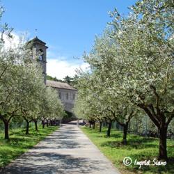 Abbazia di Piona on Lake Como