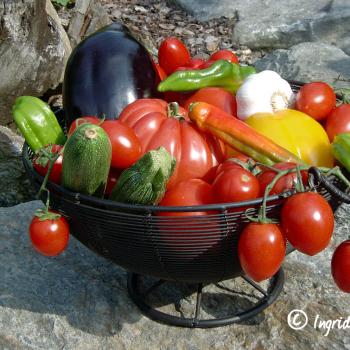 Gemüse vom Comer See