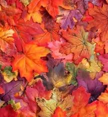 Herbstfarben in Sorico am Comer Se