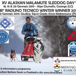 Alaskan-Malamute-2019_Comer-See